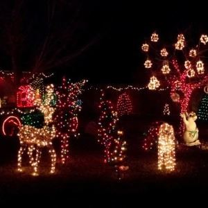 Holiday Yard Light Display