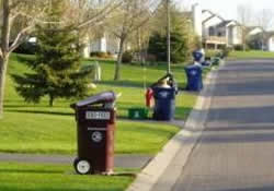 garbage bins at curb